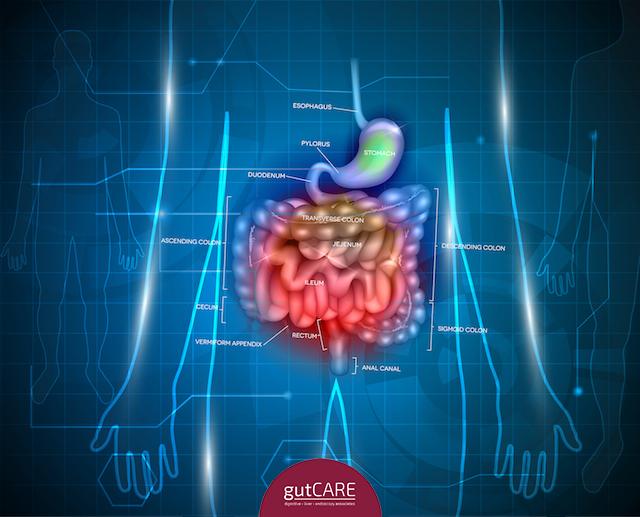 digestive-growth-and-cancer.jpg